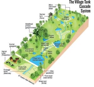 Sri Lankan tank irrigation system.  Link here