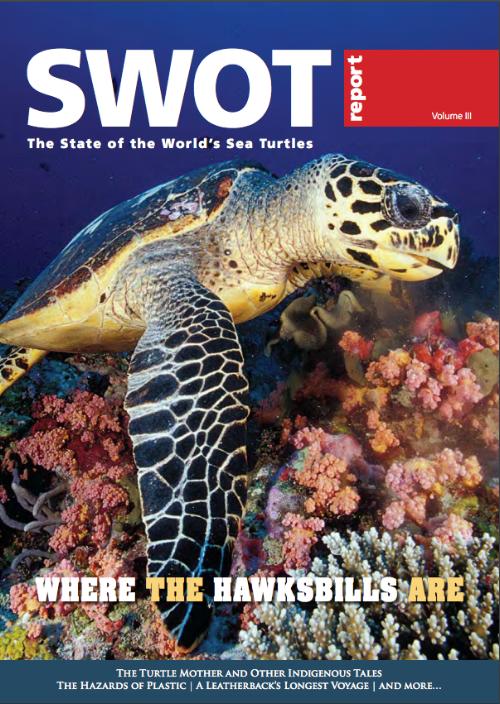 SWOT 3 Hawskbill English