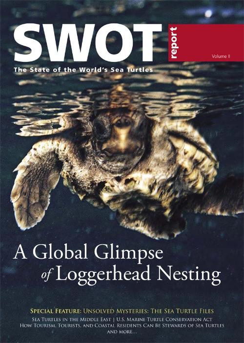 SWOT Report 2 Cover Loggerhead