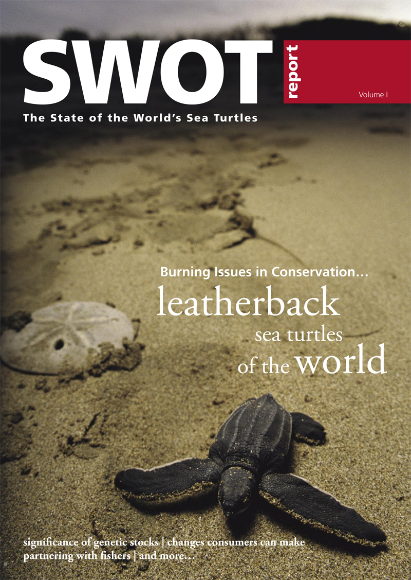 the world on the turtles back pdf