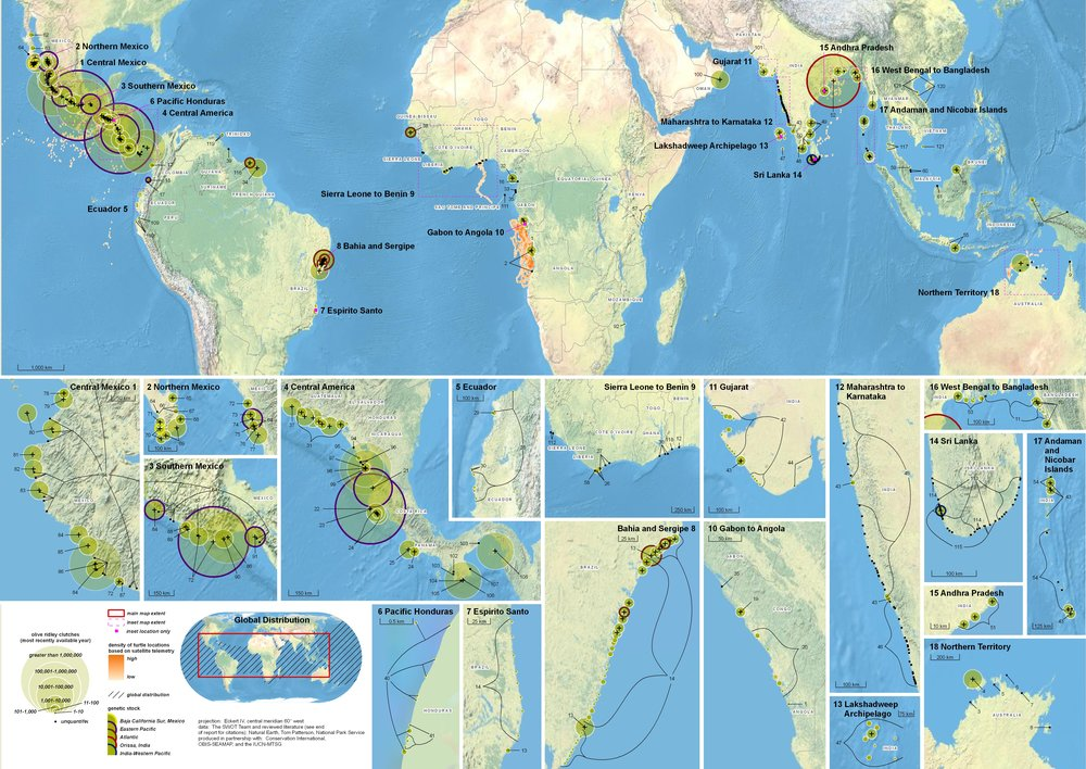 Global Biogeography of the Olive Ridley ( data citations ) |   SWOT Report , vol. V (2010) .