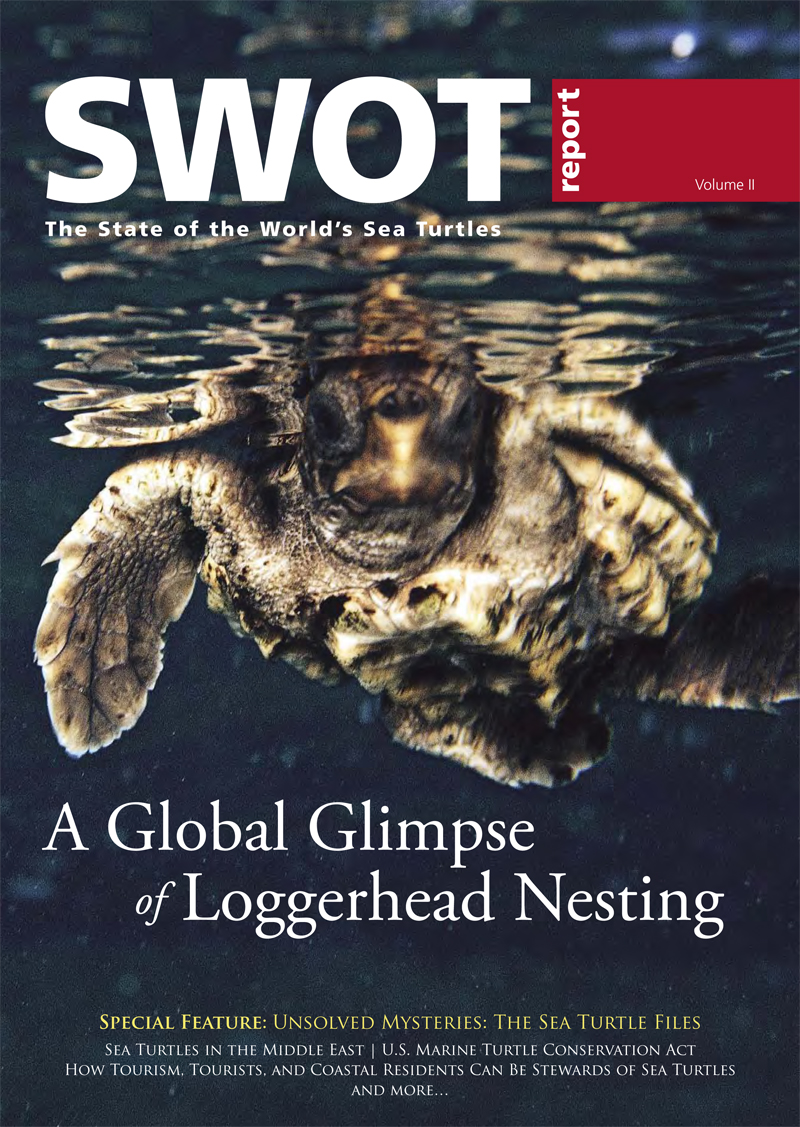 SWOTReport2-cover.jpg