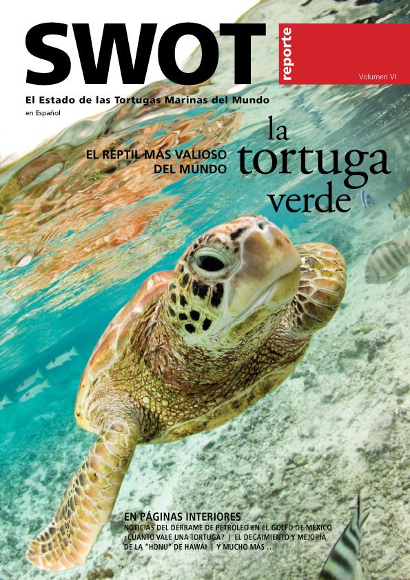 SWOT 6 Spanish_cover.jpg