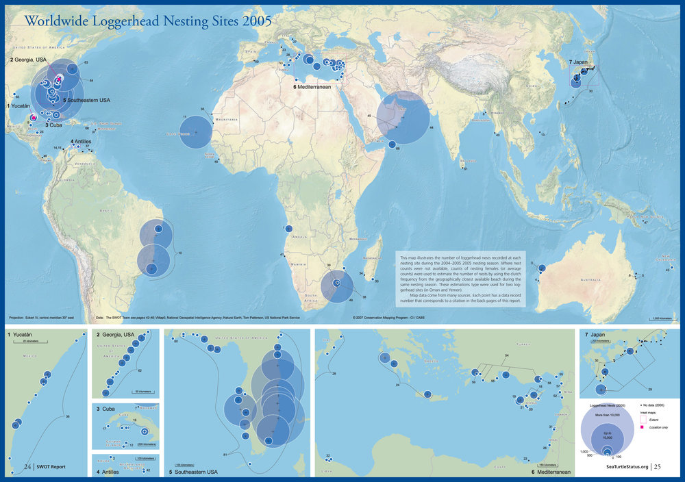 Map of global loggerhead nesting from   SWOT Report , vol. II .