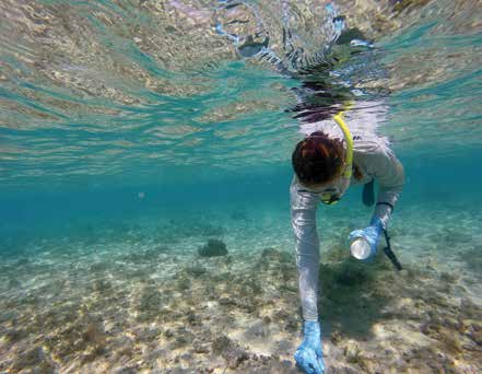 """A researcher collects sediment samples for the """"Rivers to Reef to Turtles"""" study. © GÖKSEL DOGRUER / WWF-AUSTRALIA"""