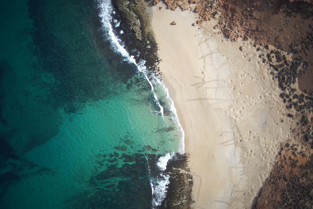 Sea turtle tracks are visible on a remote beach in northwestern Australia. © Rob Ryan