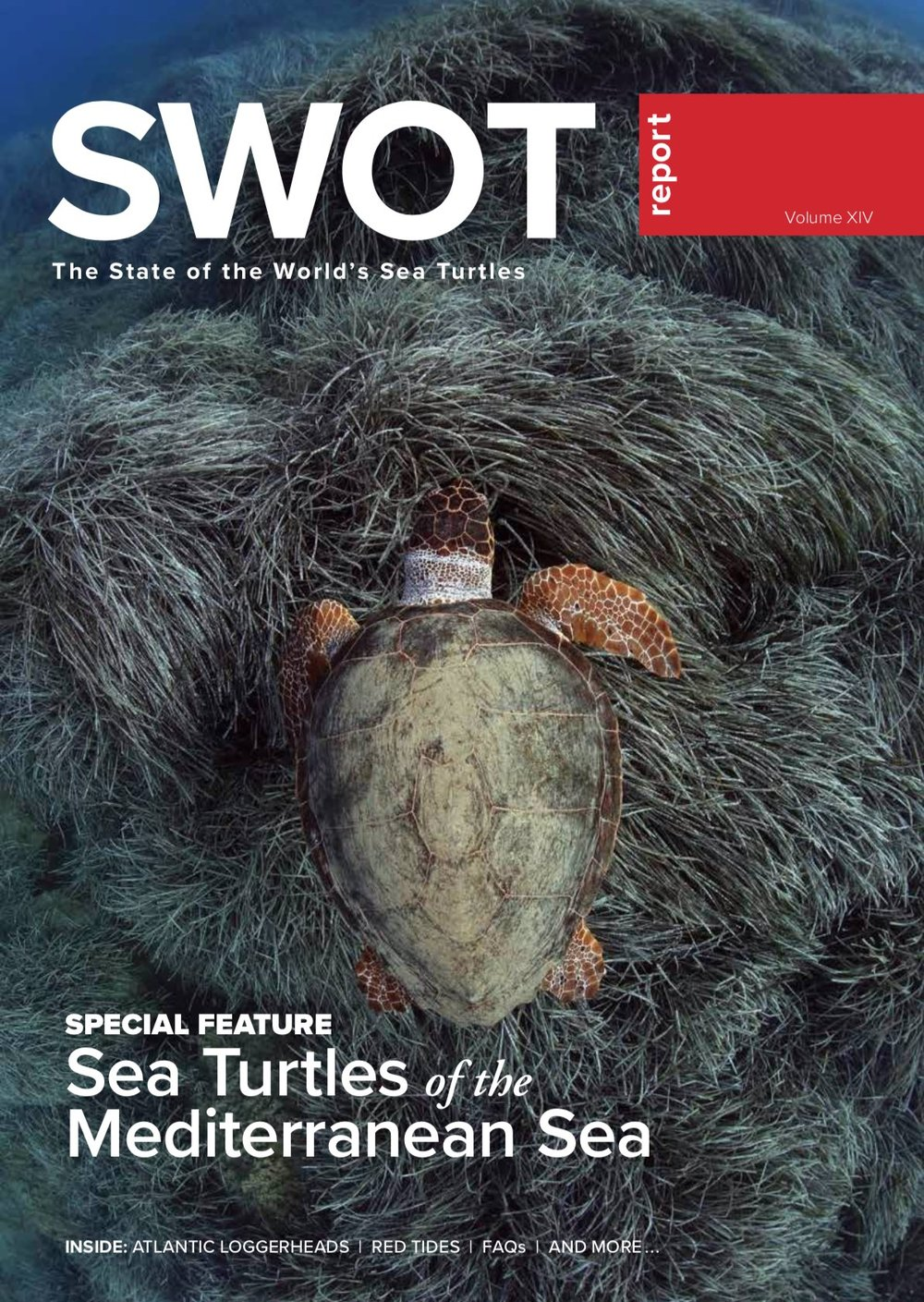 SWOT 14 Cover Small.jpg