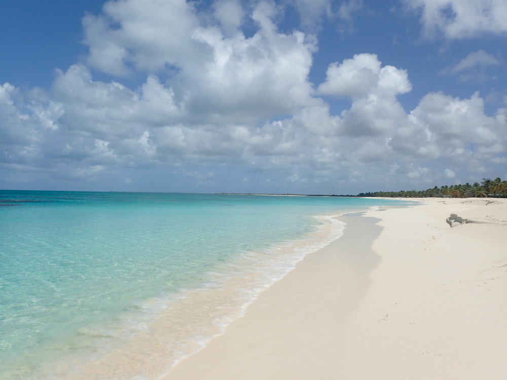 Barbuda boasts pristine beaches that are home to nesting hawksbill, leatherback, and green turtles. © WENDY MCFARLANE