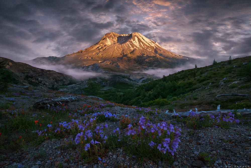 Mount-St.jpg