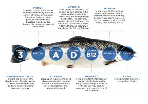 Giveaway Norwegian Salmon Yusheng - Norwegian Seafood Council (NSC) - Norwegian Salmon Nutrient and Health Benefits