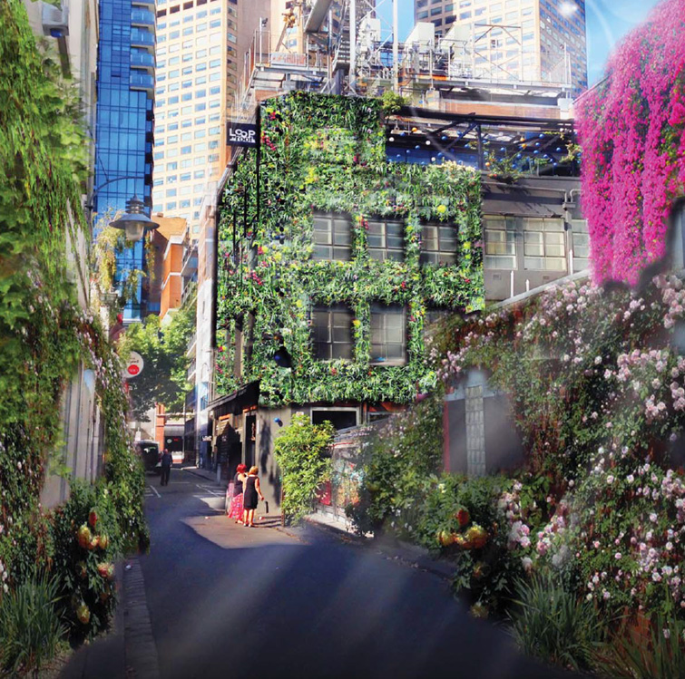 'Green Your Laneway' Meyers Place Proposal
