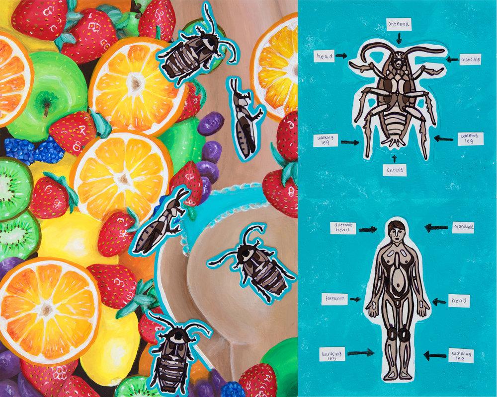 bugs final.jpg