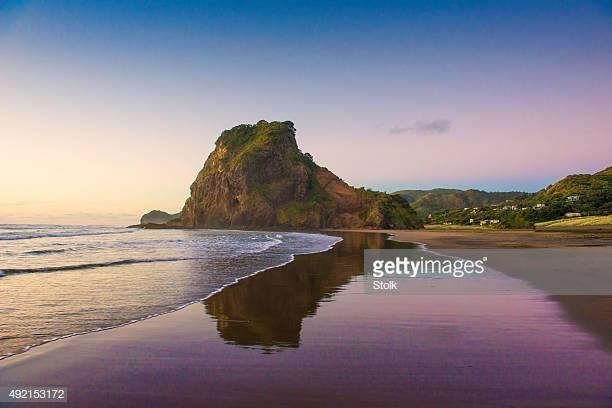 Lion Rock, Piha Beach, Auckland