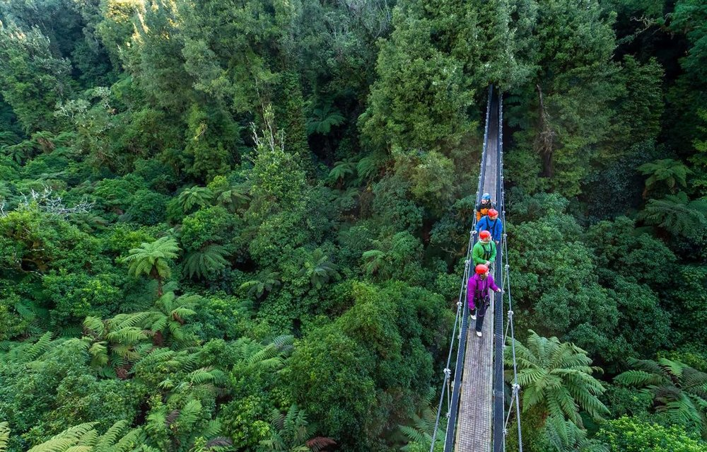 Canopy Original Tour, Rotorua, Bay of Plenty.