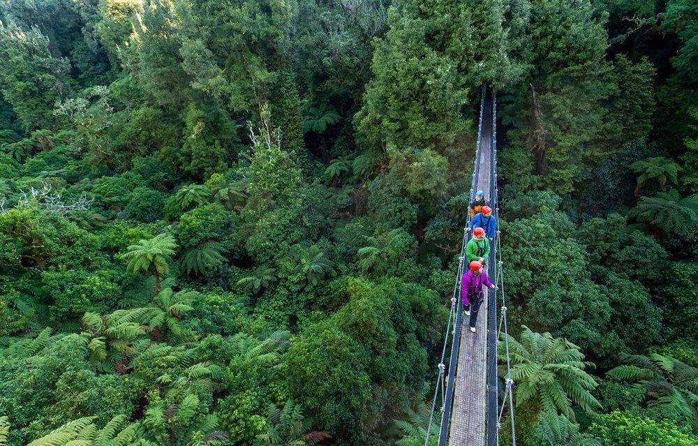 Canopy Ultimate Tour, Rotorua