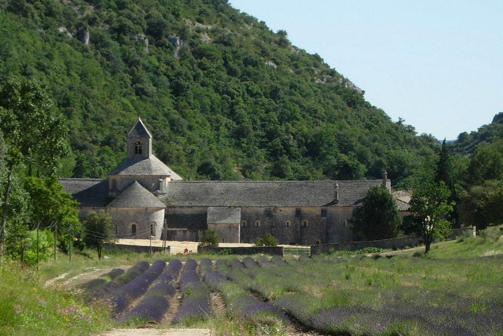 Abbaye Notre-Dame de Sénanque, Photo Louis Auger, juillet 2008