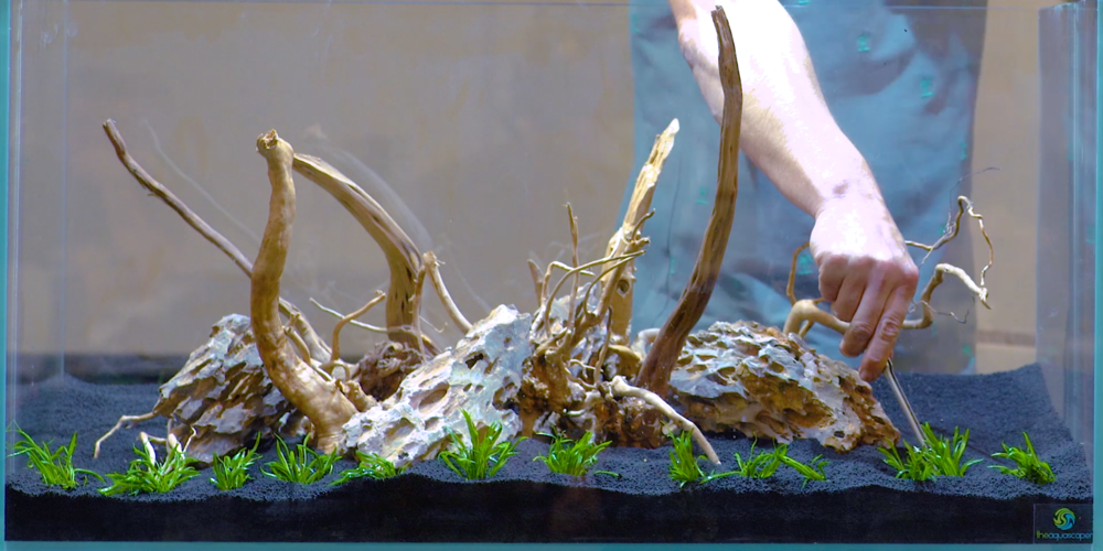 george farmer aquascaping how to tank tested