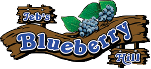 Blueberry+Hill+logo Transparent.png