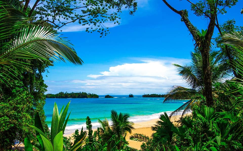 The beautiful beaches of Punta Uva surround this beautiful retreat center deep in the primary jungle of Costa Rica.