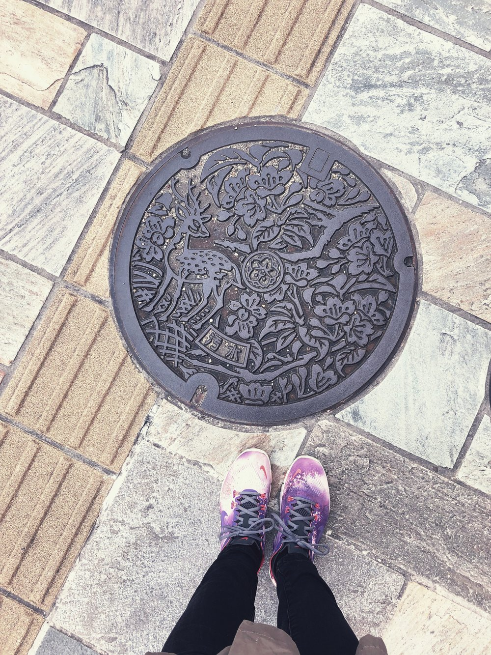 Taking pictures ot manholes in every japanese city has become a hobby, and the one in Nara had deer and cherry blossoms on it