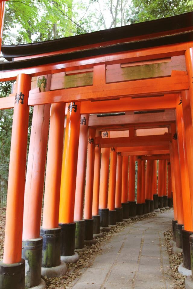 the famous orange gates