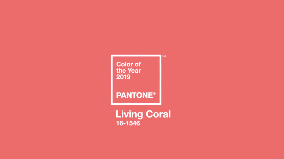 Pantone's 2019 Color of the Year.jpg