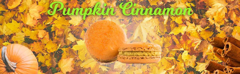 Pumpkin Cinnamon Macaron Banner