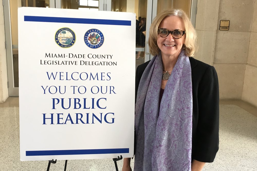 Blog-Public-Hearing.jpg
