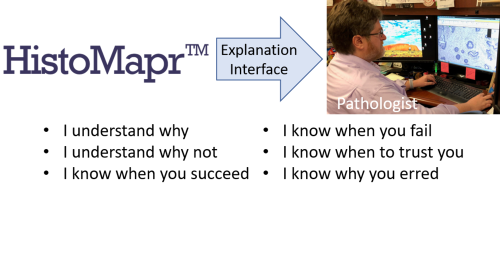 White Paper - Explainable AI (xAI) is a new approach to AI that can reveal underlying reasons for its results; this is intended to promote safety, reliability, and accountability of machine learning for critical tasks such as pathology diagnosis. HistoMapr is a software platform that provides intelligent xAI guides for pathologists to improve their efficiency and accuracy.