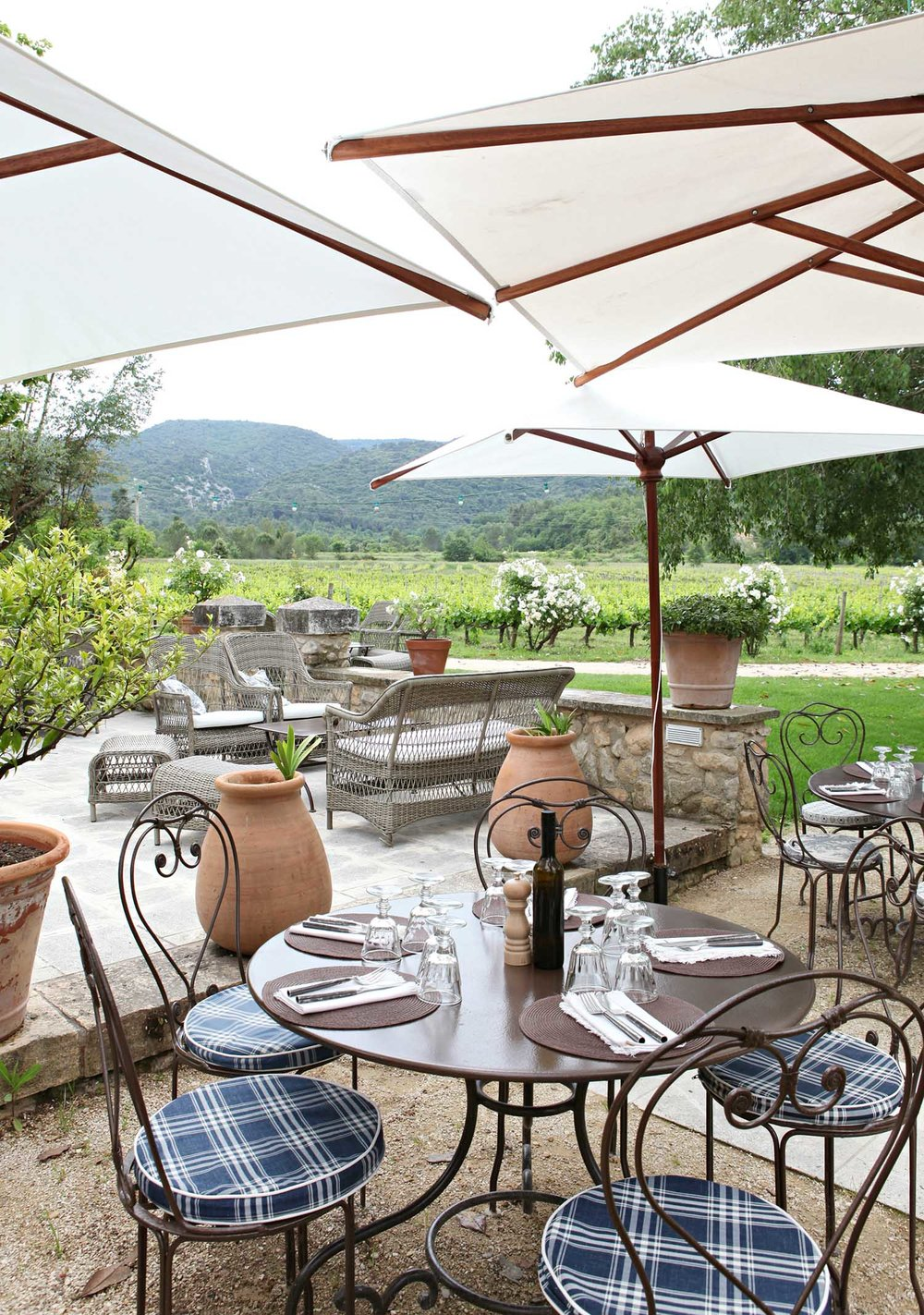 vineyard-lunch-provence.jpg