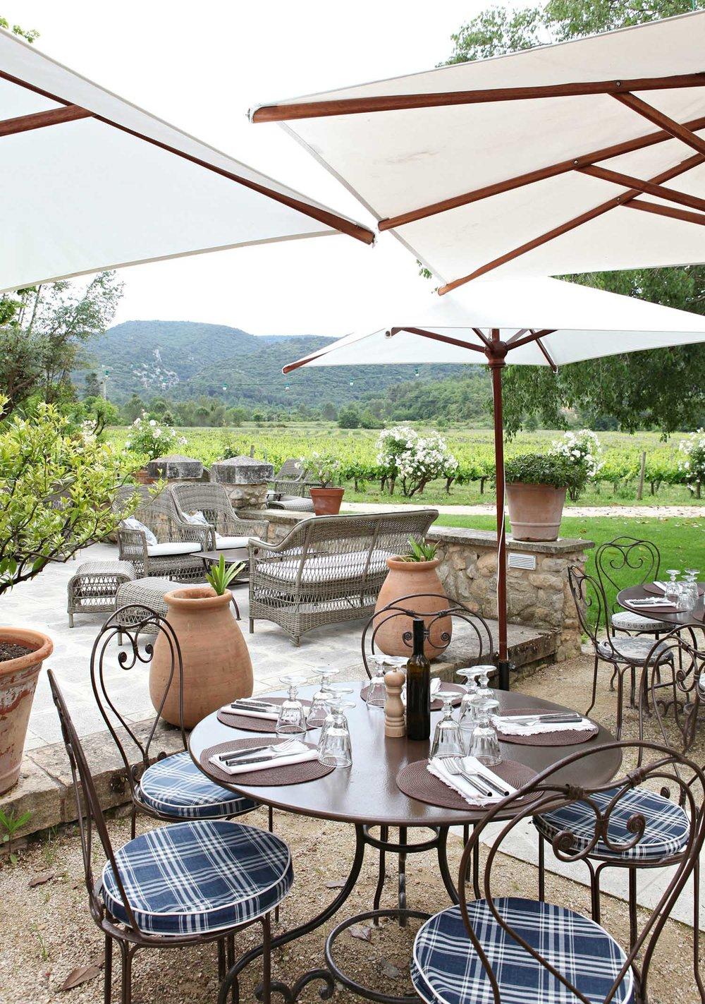 vineyard-lunch-provence.jpg
