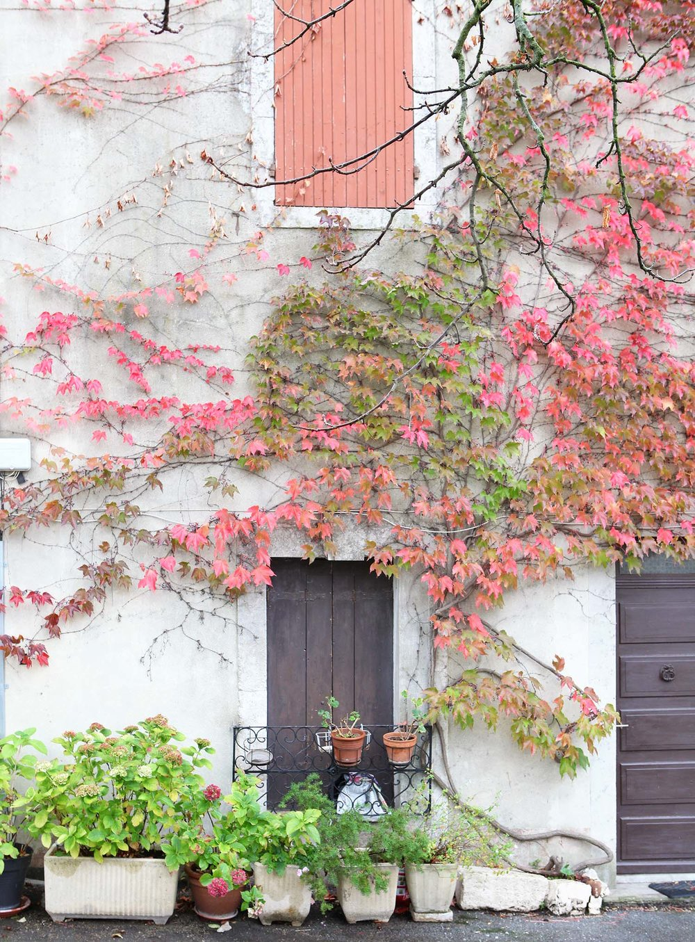 provence-fall-9.jpg