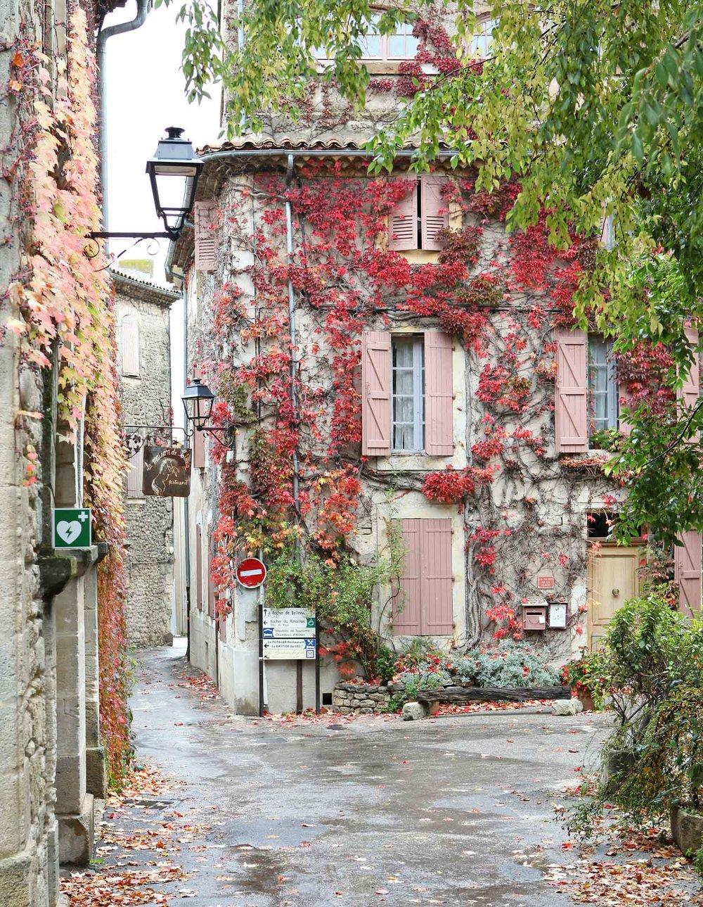 provence-fall-6.jpg