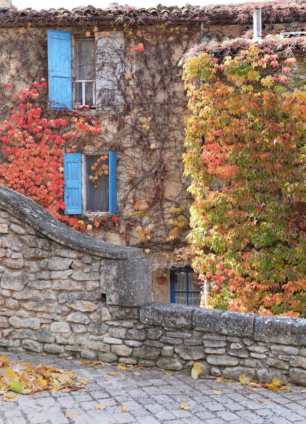provence-fall-2.jpg