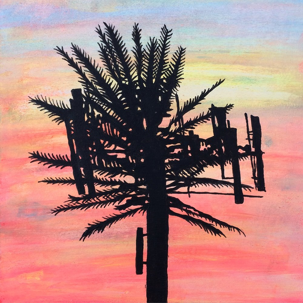 Palmtree Cell Tower - Christopher Payne.JPG