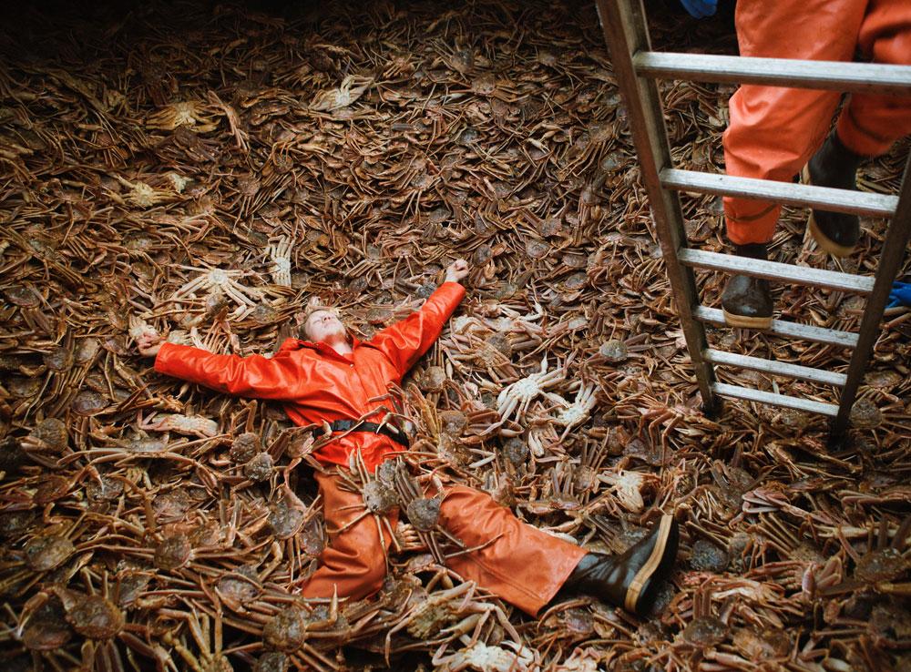 Corey Arnold ,  Opilio Bed.  (© Corey Arnold, courtesy Scottish Festivals)