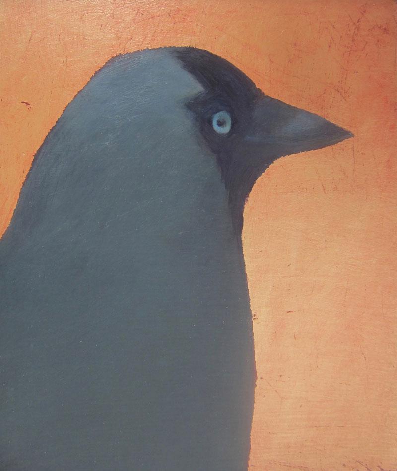 Jane MacNeill ,  Jackdaw , (Oil on Board, image courtesy the artist/An Talla Solais Gallery).