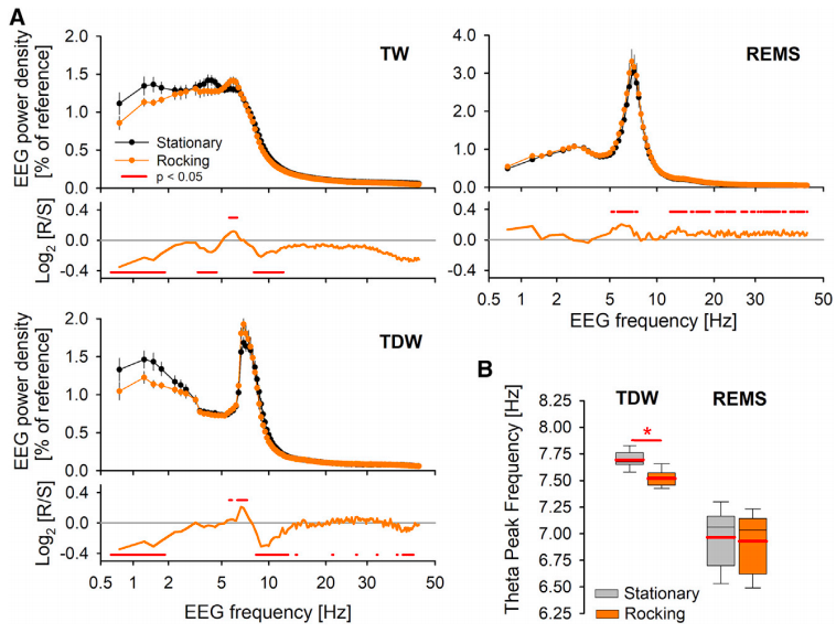 Rocking at 1.0 Hz promotes a shift in theta frequencies from high to low during wakefulness. (Credit: Kompotis et al., 2019)