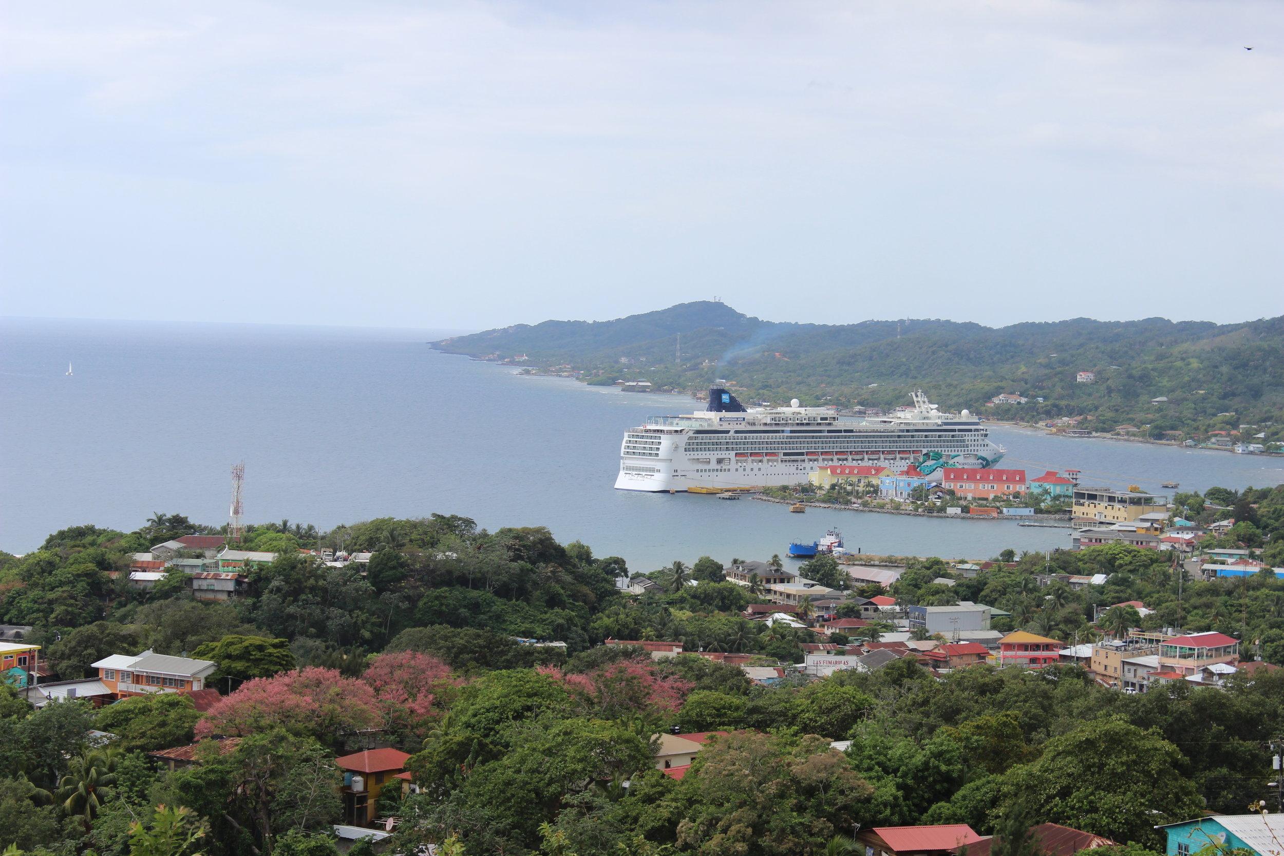 Cruised tip- Jade in Roatan