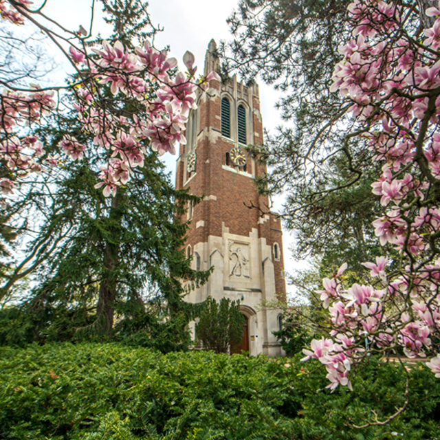 The Beaumont Tower is the best known landmark at MSU. This tower provides music and memories for Spartans near and far.