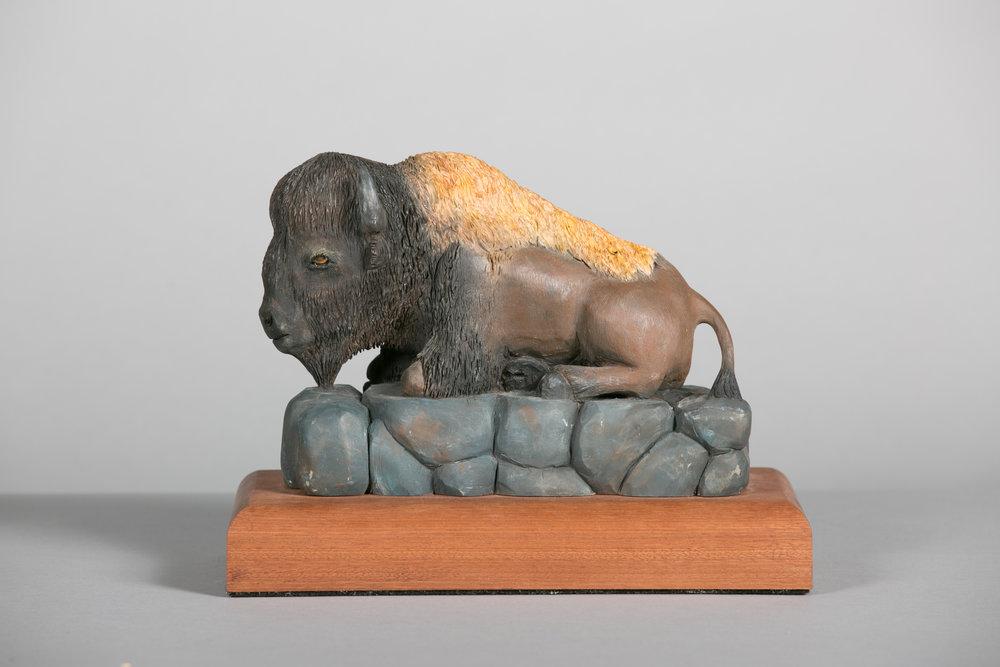 """""""Resting Bison"""" by Chris Fuller"""