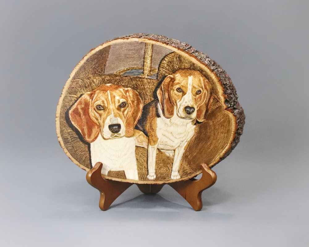 """Beagles"""