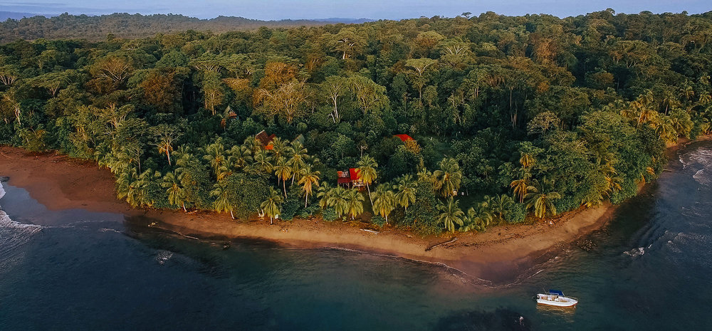 Punta Mona permaculture community, on the edge where the jungle meets the sea