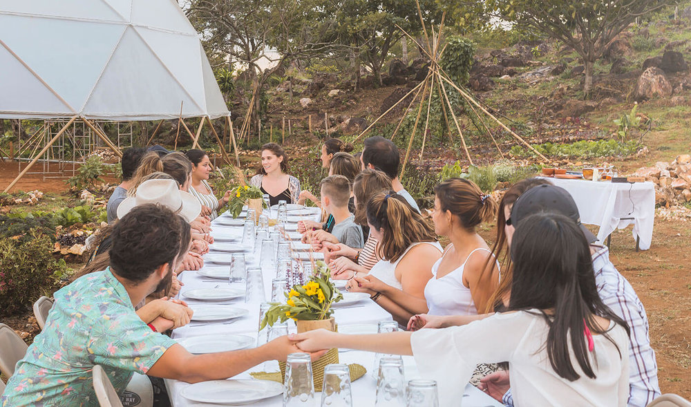 Alegria-farm-to-table-dinners.jpg