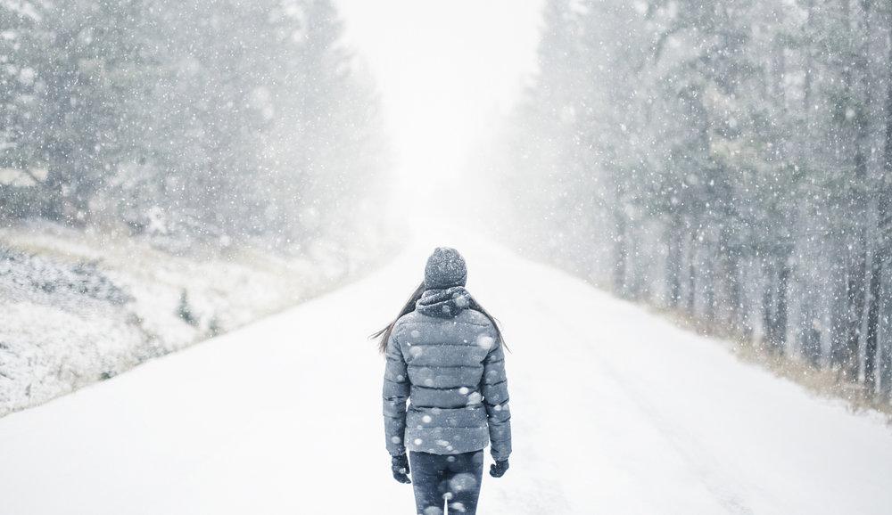 winter_cover.jpg