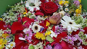 bloemenbad.jpg
