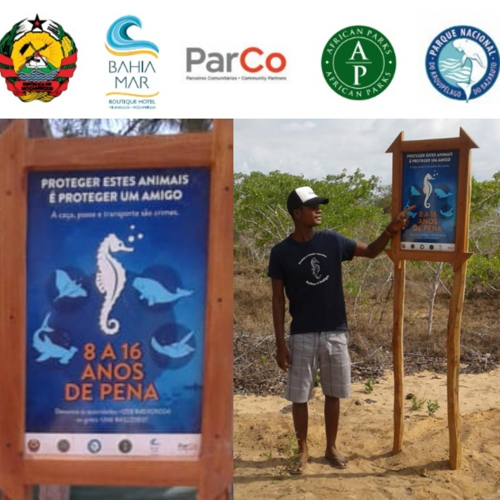 """Signage - These signs were designed in collaboration between ParCo, Bahia Mar, African Park and the local Mozambican Government Authorities. They have been installed at seven locations along the coast of Vilankulo including in the fishing village where seahorse poaching was rampant. It is no longer possible for a fisherman to say """"I didn't know we weren't allowed to catch that."""" Another step in the right direction."""