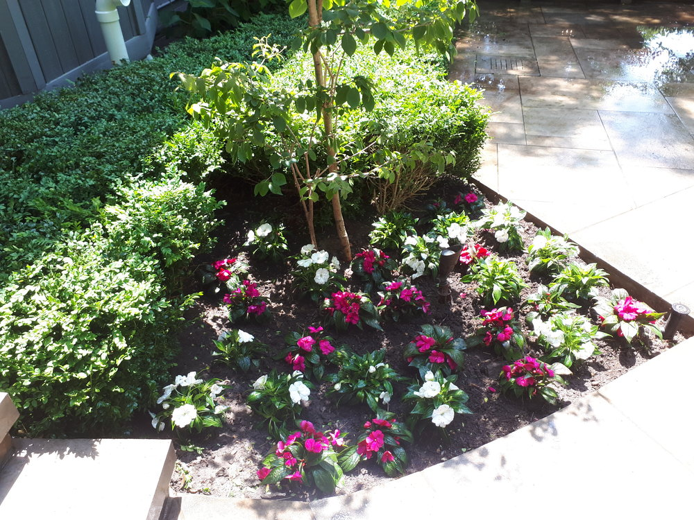 Garden Renovations - Plan and install brand new beds and rejuvenate tired, overgrown gardens to enhance the beauty of any property. See our transformations gallery.