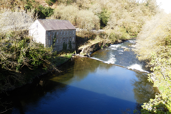 River Teifi | Restoring Connections