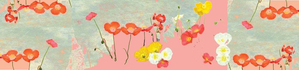 seaofpoppies.poppypeaches.Website Banner.jpg